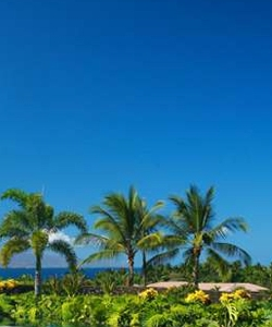 Wailea Condominiums for Sale